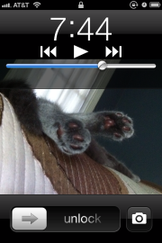 iOS 5 camera lockscreen