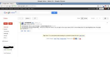 Setting up a new Google Voice account from the Web page.